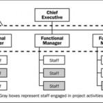 Project Manager nelle strutture organizzative funzionali