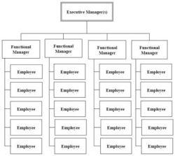 organizzazione funzionale