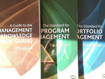 standard nel project management