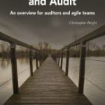 Agile Governance & Audit