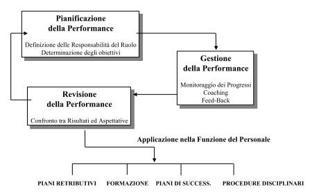 gestione della performance