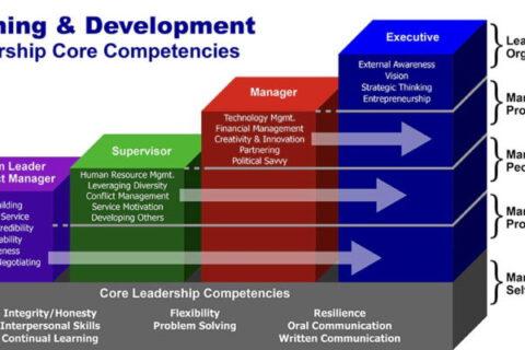 competenze sviluppo manageriale